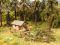 Noch 12046 Forest Work